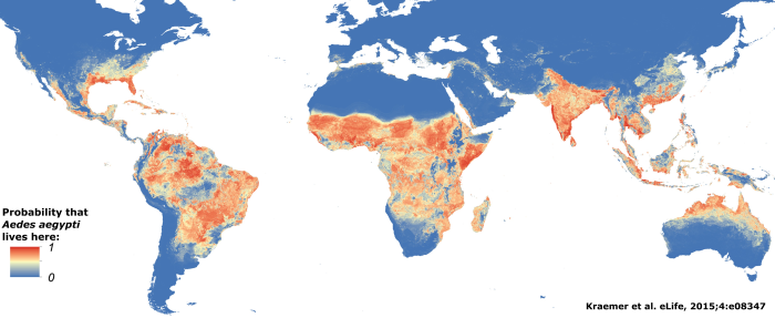 aedes aegypti distribution.png