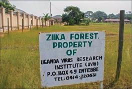 zika forest
